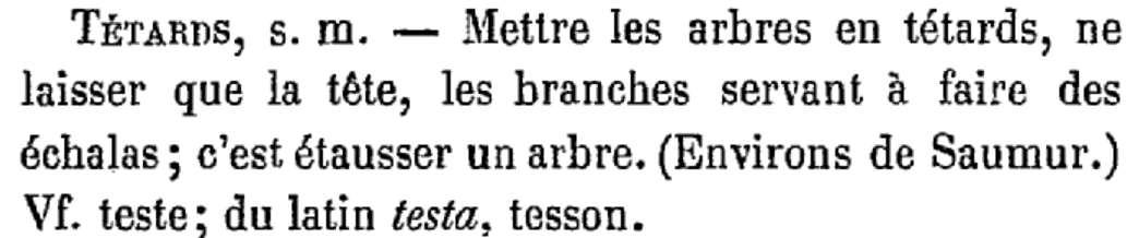 tetard C.MénièreAngevin