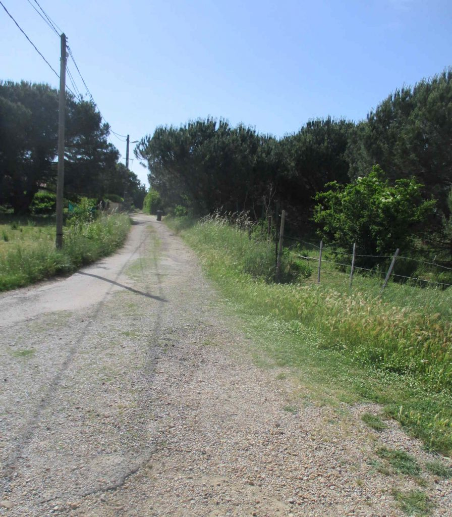 Chemin de Couladou
