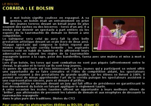 BolsinPhotothèque